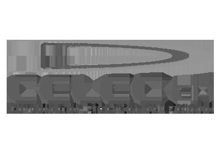 Celec Ep Empresa Eléctrica del Ecuador